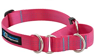 "Canine Equipment Technika 1"" All Webbing Martingale Dog Collar, X-Large, Raspberry"