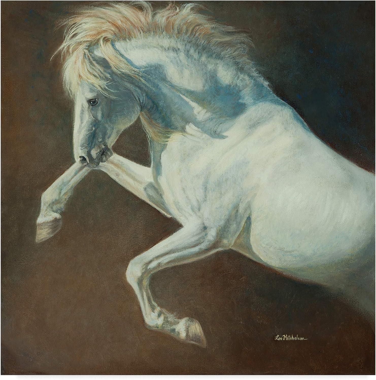 Trademark Fine Art ALI41955-C1414GG Wind Spirit Art by Lee Mitchelson, 14x14