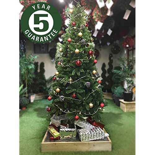 Pe Christmas Trees Amazoncouk