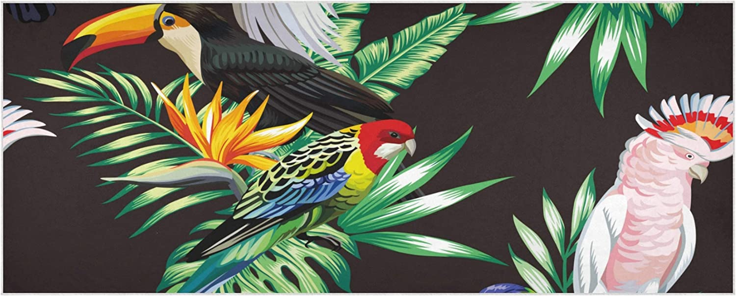 Tropical Animals Birds Parrot Macaw And Toucan On Blanket Scarf For Women 70.9x27.6 Inch Polyester Women Winter Scarf Soft Comfortable Women Scarf Suitable For Parties Work Travel