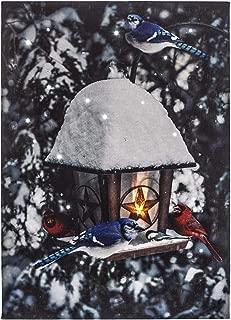 Oak Street Cardinal & Blue Jay Birdhouse, LED Art 8