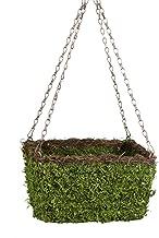 SuperMoss (29212) MossWeave Hanging Basket - Square, Fresh Green with Wicker Rim, Small (10.5 Diameter)