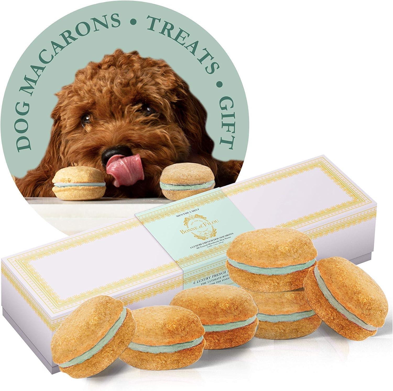 Free Shipping New Bonne et Filou Dog Treats Macarons Luxury Gifts Japan's largest assortment Handmade