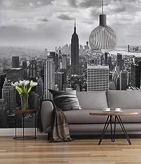 Sunny Decor SD323 - Fotografía mural (368 x 254cm, 8 piezas), diseño de Nueva York