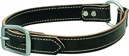 Terrain D.O.G. Bridle Leather Ring-In-Center Dog Collar