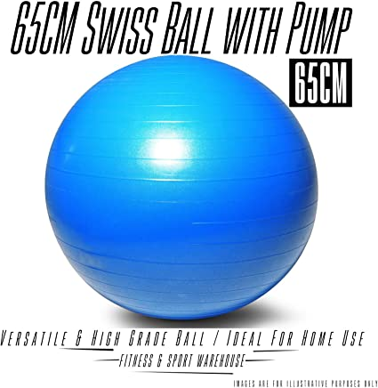 65CM Swiss Ball with Pump Fitness Yoga Gym Exercise Equipment