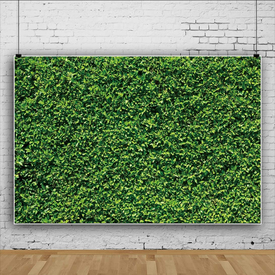 OFILA Polyester Fabric Greenery Backdrop 7x5ft Kids Safari Birthday Party Photography Background Baby Shower Photo Shoot Video Backdrop Wild One Theme Party Photos Props
