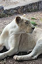 White Lioness Journal: 150 page lined notebook/diary