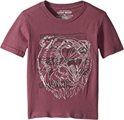Bear Head Embroidered Short Sleeve T-Shirt (Little Kids/Big Kids)