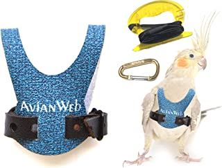 Avianweb Dazzling Blue Bird Harness