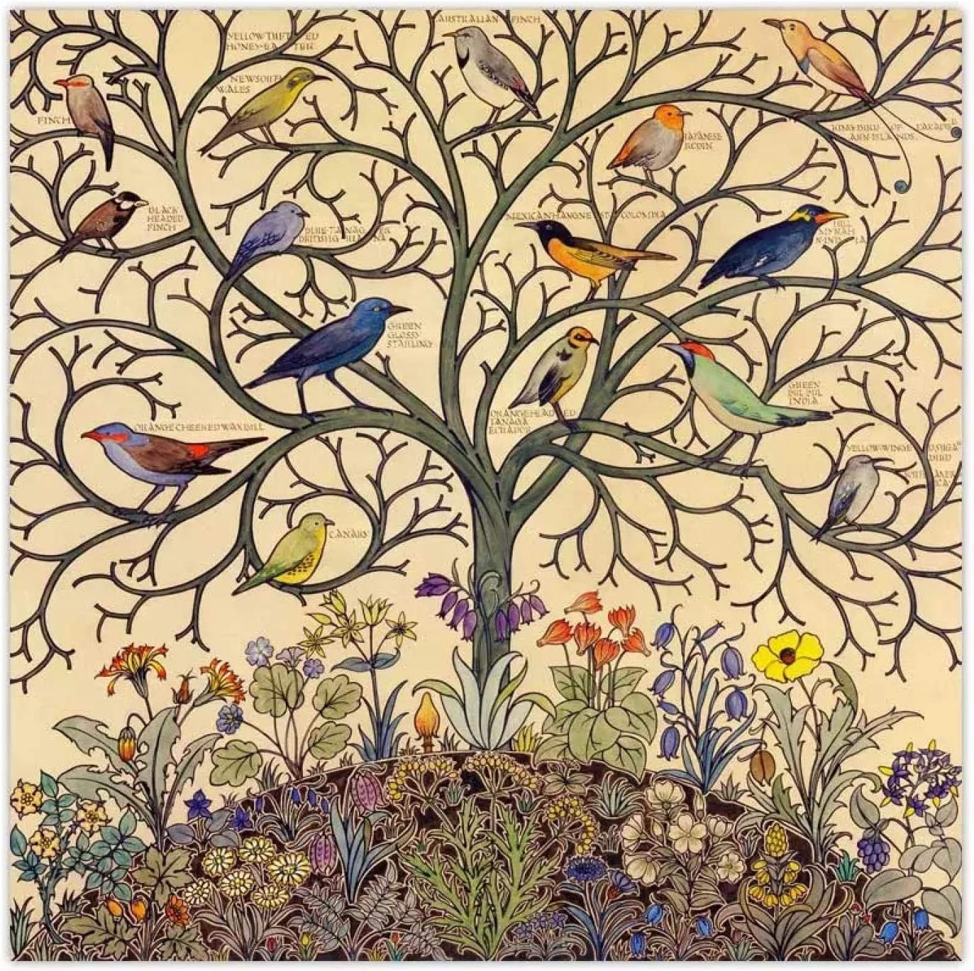 Sunsightly Canvas Denver Mall Wall Art price Tree C Life Tropical Songbirds of