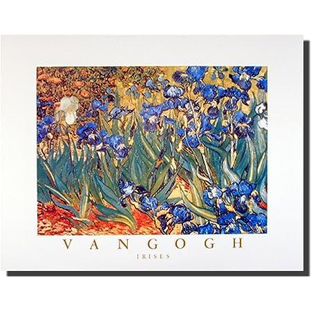 van Gogh Iris Garden Poster Kunstdruck Bild 60x80cm