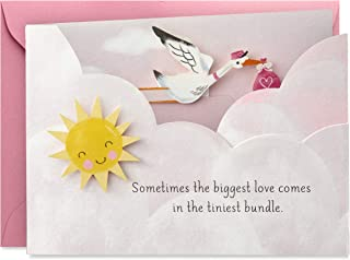 Hallmark Paper Wonder Paper Craft Baby Shower Card for Baby Girl (Stork)