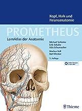 PROMETHEUS Kopf, Hals und Neuroanatomie: LernAtlas Anatomie (German Edition)