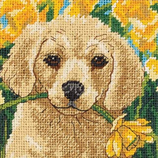 Dimensions Puppy Mischief, Multi-Colour