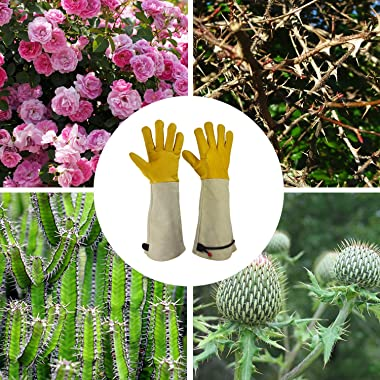 GLOSAV Cactus Gloves, Thorn Proof Gardening Gloves for Rose Pruning & Cacti Handling
