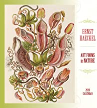 Ernst Haeckel: Art Forms in Nature 2019 Wall Calendar