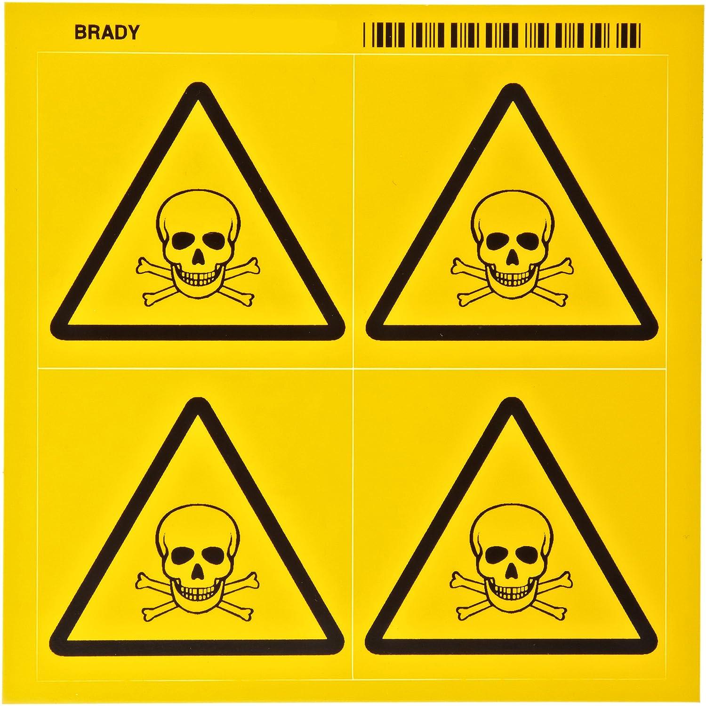 Brady 58578 Pressure Sensitive Vinyl Right-To-Know Pictogram Lab