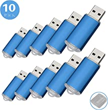RAOYI 10Pack 1GB 1G USB Flash Drive USB 2.0 Memory Stick Bulk Thumb Drives Pen Drive Blue