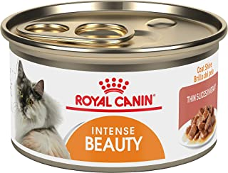 royal canin professional beauty