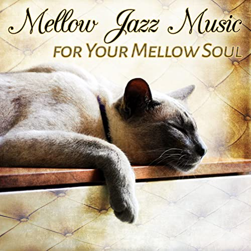 Chill on the Sofa by Amazing Chill Out Jazz Paradise on ...