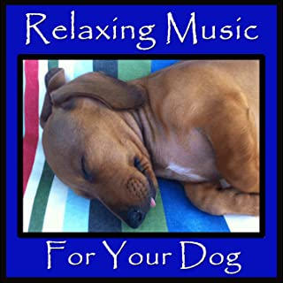 Relaxing Music for Your Dog