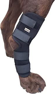 kruuse rehab hock protector for dogs