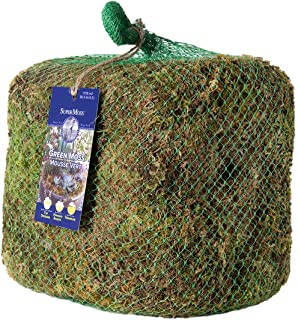 3lbs Forest Moss Dried SuperMoss Renewed Natural 21533