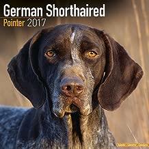 German Shorthair Pointer Calendar 2017 - Dog Breed Calendars - 2016 - 2017 wall calendars - 16 Month by Avonside