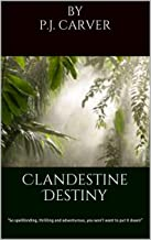 Clandestine Destiny: Thriller, adventure and romance.