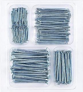 Coceca Hardware Nail Assortment Kit 200pcs, Galvanized...