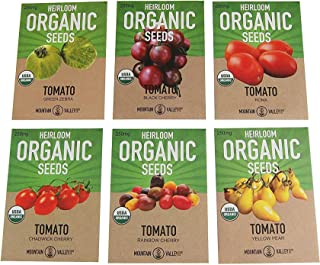 6 Varieties Non-GMO Heirloom Organic Cherry Tomato Seeds – Yellow Pear Tomato Seeds, Black Cherry Seeds, Roma Tomato Seeds Organic, Rainbow Cherry Tomatoes, Green Zebra Tomato Seeds, Chadwick Cherry
