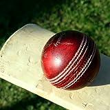 Pegue el cricket: Juegos gratis