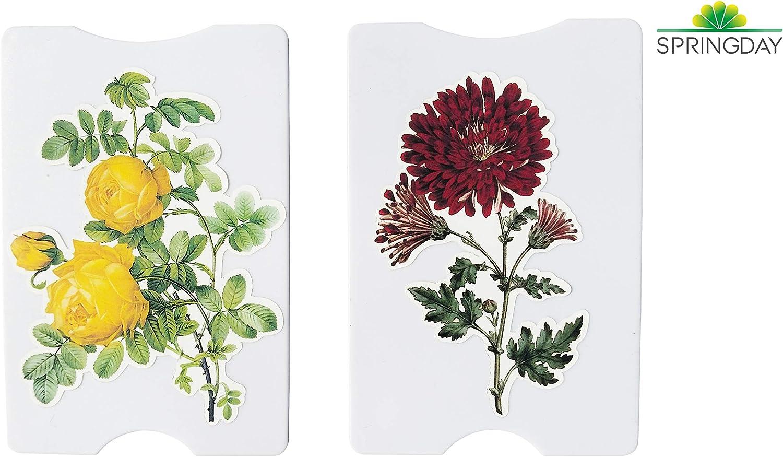 Rose Rouge et Fleur Exotique Protection par Springday/ Blocage et S/écurit/é Anti RFID /étui Carte de cr/édit//de Bus//Vitale//de fid/élit/é 2/×Porte Carte Femme Rigide personnalis/é