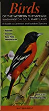 Birds of the Western Chesapeake: Washington DC & Maryland: A Guide to Common & Notable Species (Quick Reference Guides)