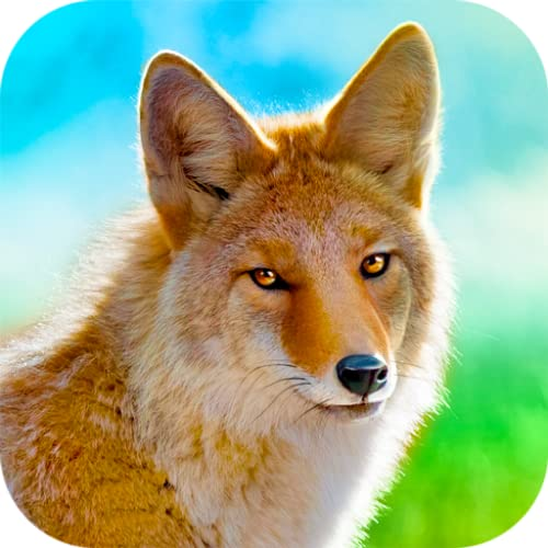 Stunning Coyote Life - Thriving Wilderness Quest Simulator