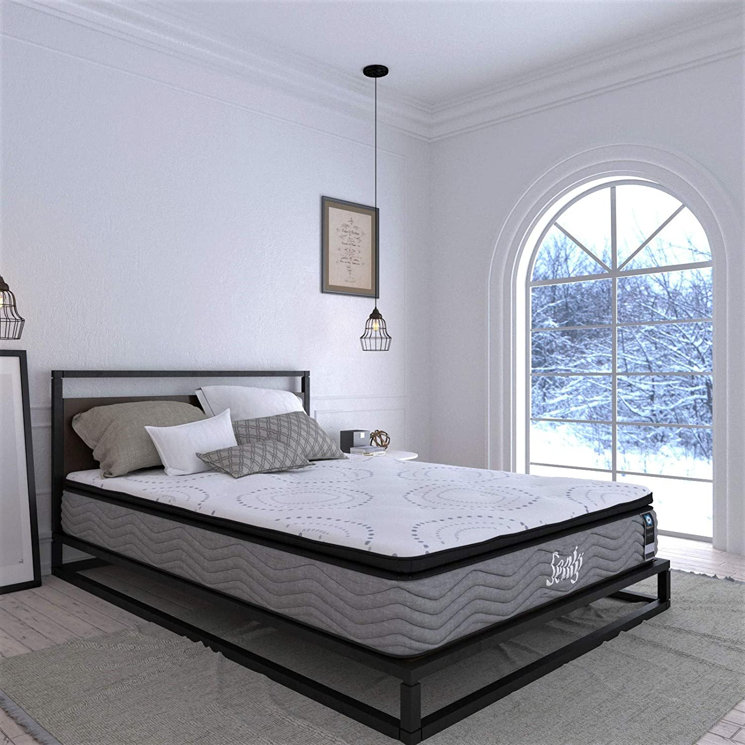 Sealy Firm Evolution Sale SALE% OFF Mattress - Box B Without Single Finally resale start Fritz