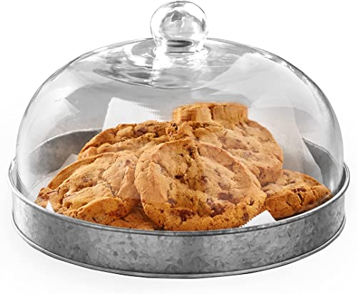 discount Glass Domed Serving Plate for Confectionery outlet sale and Baked outlet online sale Goods - Galvanized outlet sale