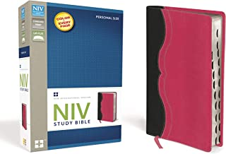 NIV Study Bible, Leathersoft, Gray/Pink, Red Letter Edition, Thumb Indexed