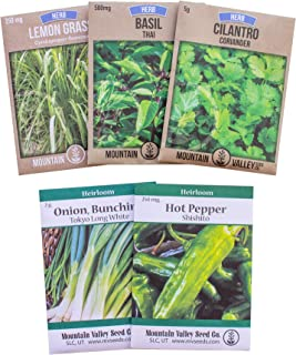 Asian Herb Garden Seed Collection - 5 Non-GMO Culinary Herb Seed Packets - Thai Basil, Lemongrass, Tokyo Long White Bunching Onion, Shishito Pepper, Slow Bolt Cilantro