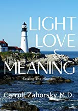 LIGHT LOVE & MEANING: Seizing The Moment (Seizing The Moment Mastery)