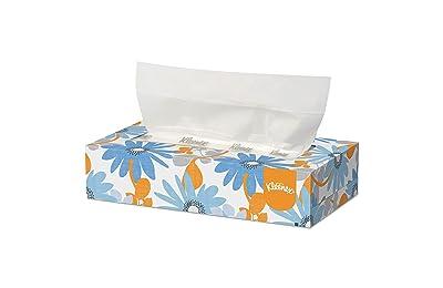 Best tissue box for car