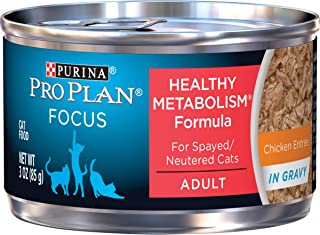 Purina Pro Plan High Protein Gravy Wet Cat Food, Focus Healthy Metabolism Formula Chicken Entree - (24) 3 oz. Pull-Top Cans