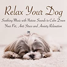 Relax Your Dog – Soothing Music with Nature Sounds to Calm Down Your Pet, Anti Stress and Anxiety Relaxation