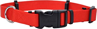 "Coastal Pet Products 06192 RED20 Flea Collar Protector, 1"" x 20"" Medium, Red"