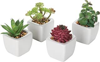 Best office desk plant Reviews