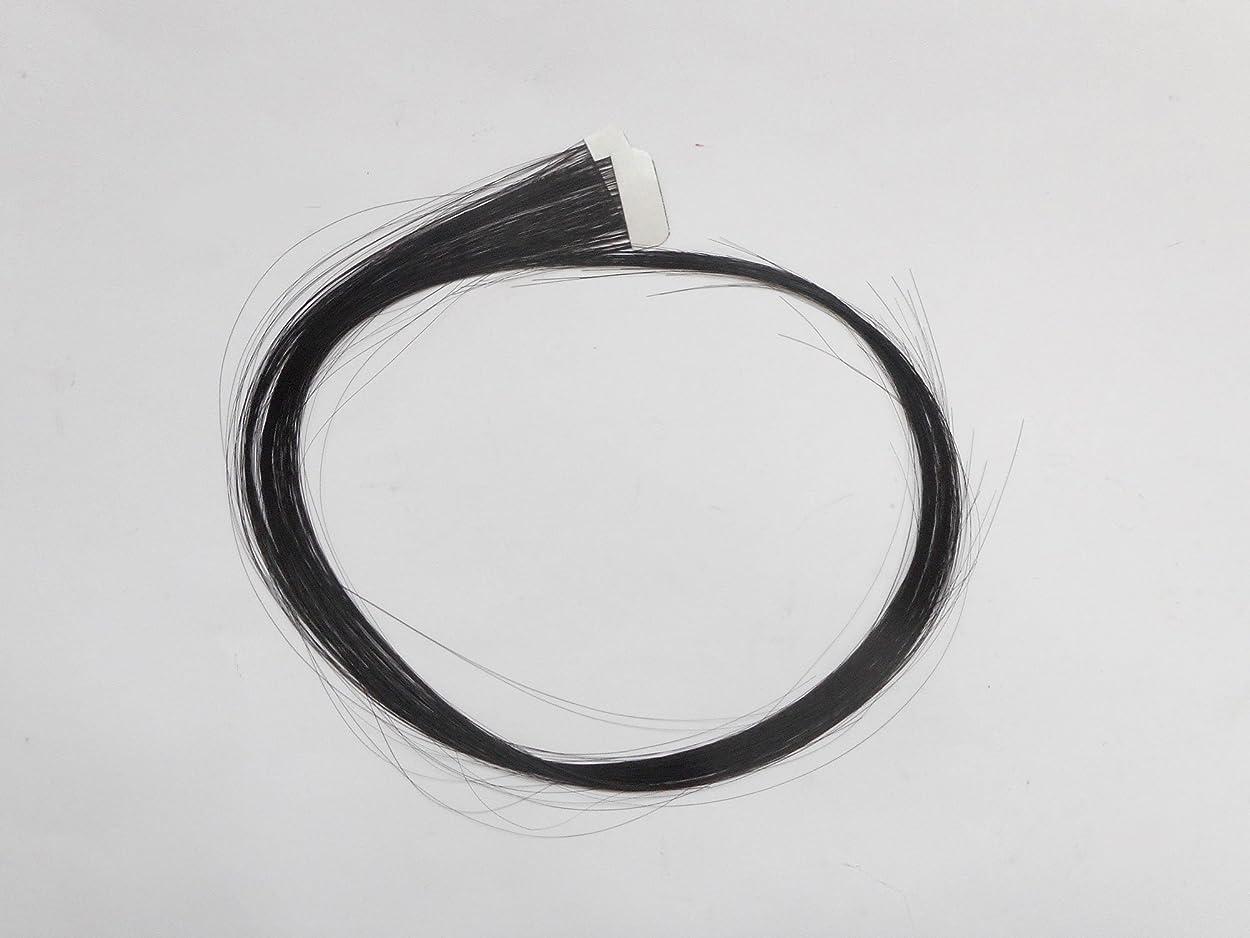 ピアース彼の千簡単エクステ テープエクステンション シールエクステンション 2枚入 10色カラー (ブラック)