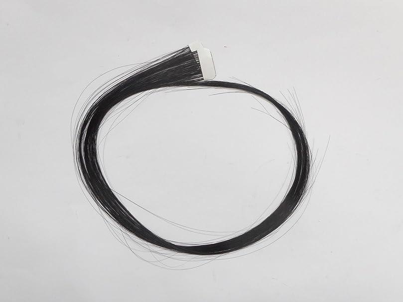 発生する反発する起点簡単エクステ テープエクステンション シールエクステンション 2枚入 10色カラー (ブラック)