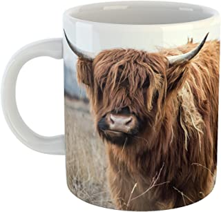 Westlake Art - Cow Highland - 11oz Coffee Cup Mug - Modern Picture Photography Artwork Home Office Birthday Gift - 11 Ounce (C799-4411D)