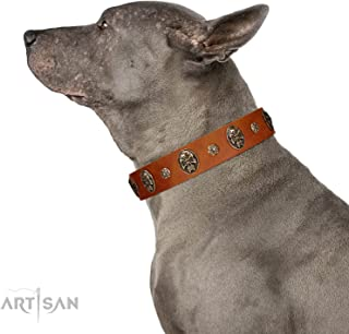 FDT Artisan Tan Leather Dog Collar with Engraved Studs and Medallions -